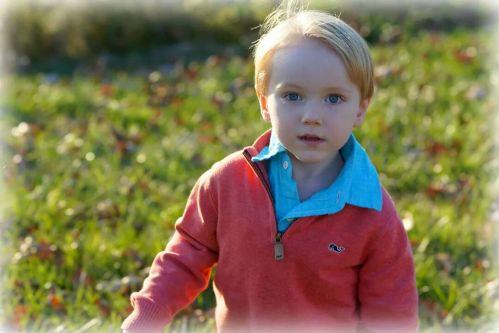 Figure 5 - Jett Black at 3 years old.